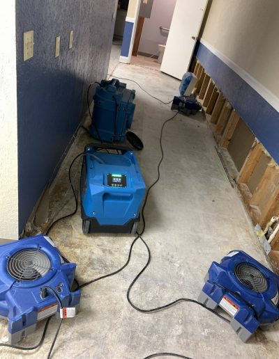 Best Water Removal Company Near Me Tampa